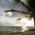 Enjoy the cool sea breeze